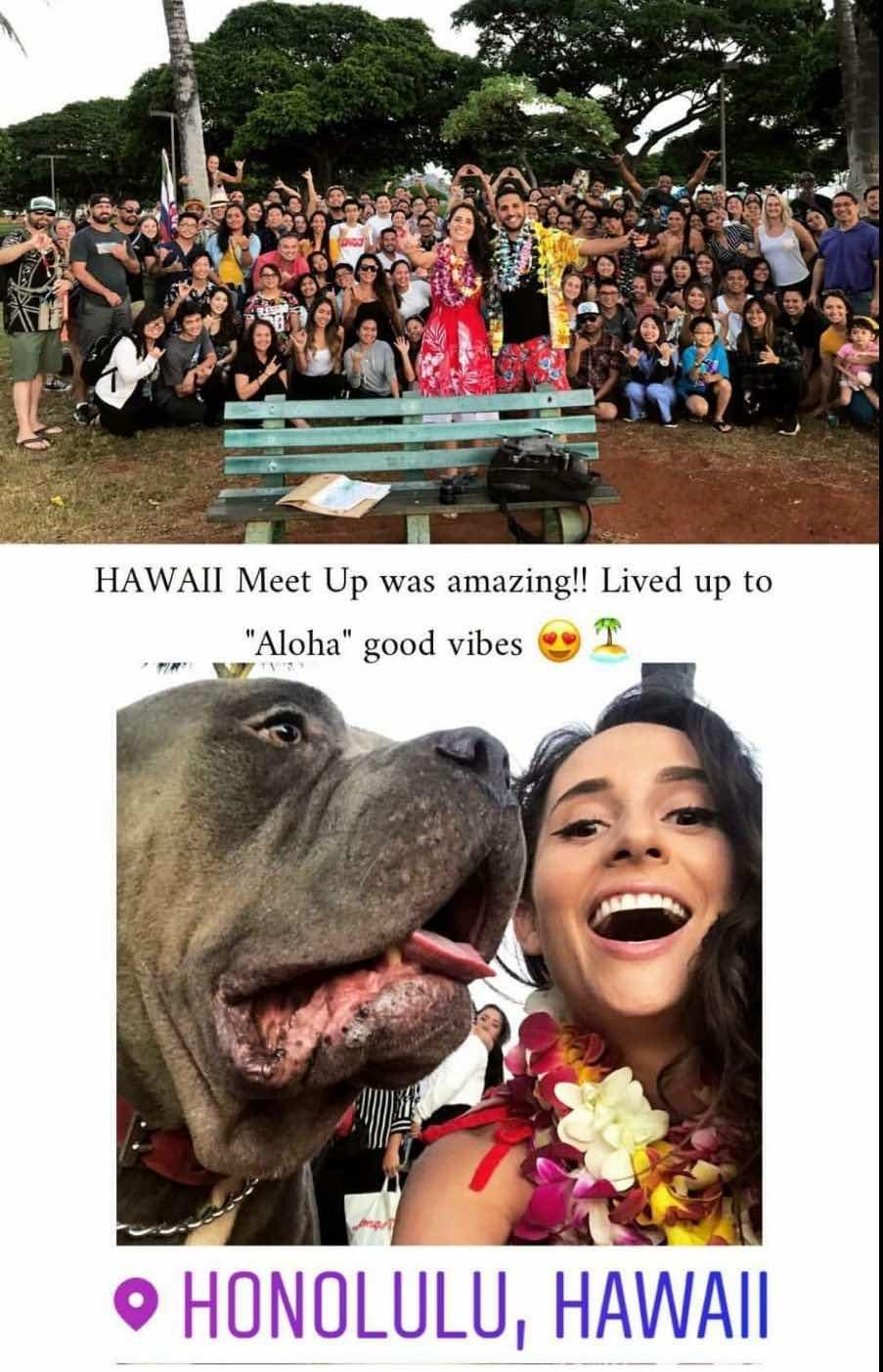 aloha in hawaii