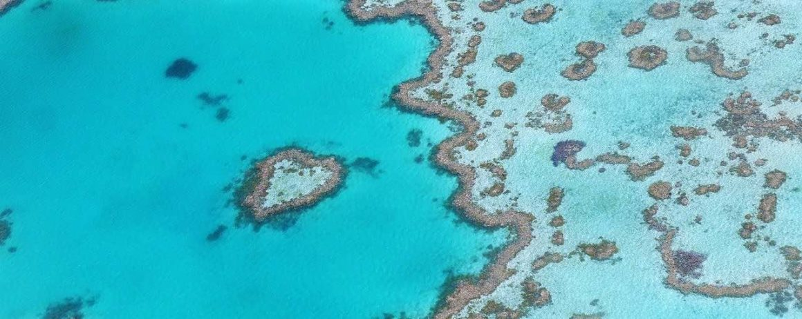 heart reef in the national bay australia