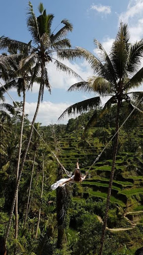 the swing in bali