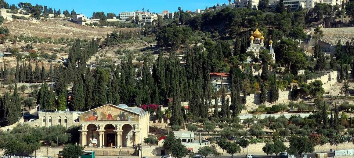 visit mount olive in israel